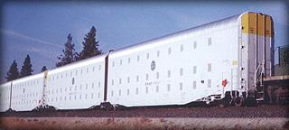 whiteboxcars
